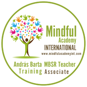 Mindful Academy International, MBSR teacher