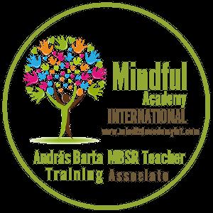 Mindful Academy International, MBSR teacher